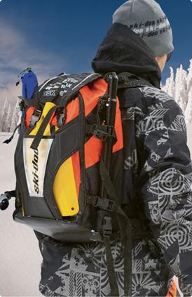 Рюкзаки снегоходные каталог кожаных сумка рюкзак для женщин